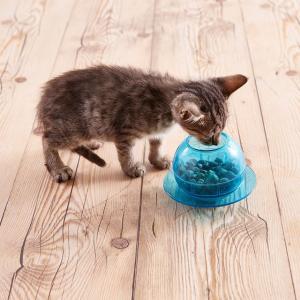 8.5折精选热销宠物用品特惠 猫粮狗粮、宠物零食、维生素