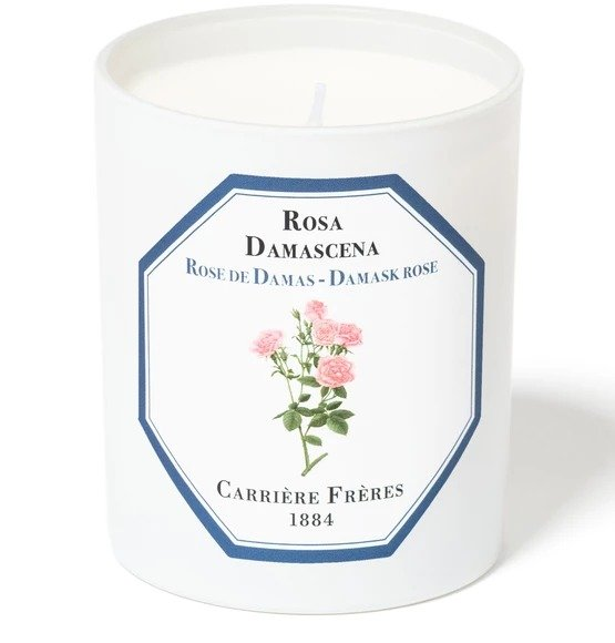 Damask Rose 大马士革玫瑰