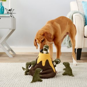 FRISCOHide and Seek Plush Volcano Puzzle Dog Toy - Chewy.com