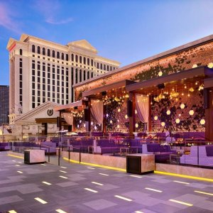 From $109 Including $75 Pool CreditCaesars  Palace in Las Vegas