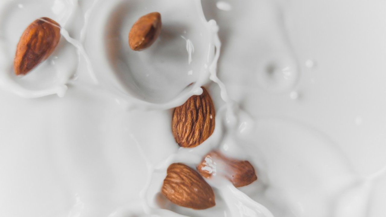 法国植物奶推荐|乳糖不耐受,不爱喝牛奶的朋友们看过来!椰奶/杏仁奶/米浆/榛子奶等