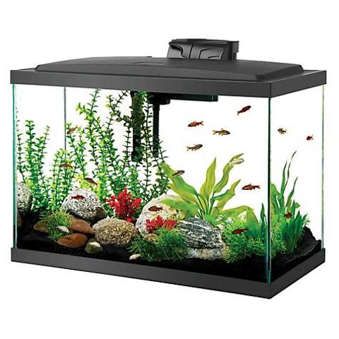 Up to 39% OffAqueon Aquarium Tank on Sale