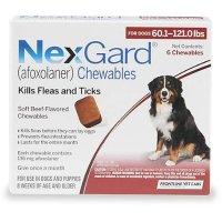 NexGard 超大型犬口服驱虫药