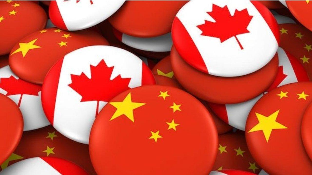 肺炎特殊时期必备技能:旅加中国公民如何登记获取领事保护协助