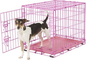 Frisco Fold & Carry Single Door Dog Crate, Pink, 24-in - Chewy.com