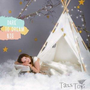 $54.95+包邮TazzToys 儿童防水帐篷,带装饰羽毛、彩灯