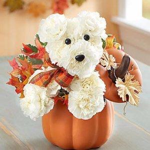 Save 25%Thanksgiving Centerpieces @ 1-800-Flowers.com