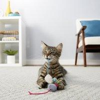 FRISCO 猫咪玩具 3个