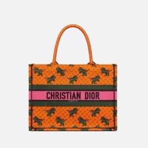 解锁Dior新配色 太可爱啦Dior 21秋季新款上市 创意小恐龙 赵丽颖倾情演绎