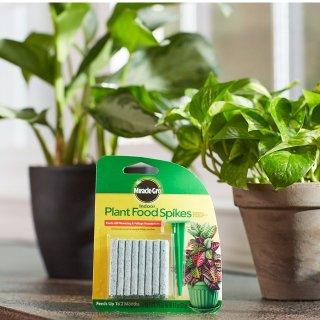 $2.24白菜价:Miracle-Gro 室内盆栽植物化肥棒 48根