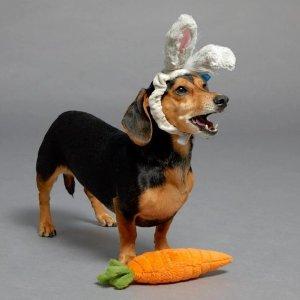 BARKSHOP狗狗玩具