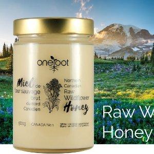 低至8折 天然蜂蜜$0.02/克Oneroot 100%加拿大野花奶油白蜜 甜点泡水营养蜜