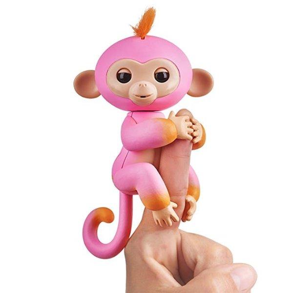 粉色指尖猴