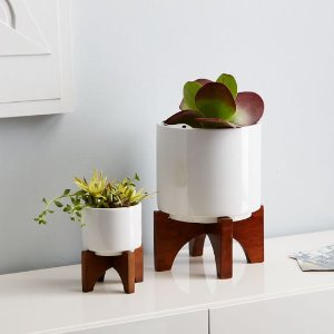 Mid-Century Turned Leg Tabletop Planters | west elm