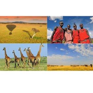 包含托运行李科隆往返肯尼亚往返机票仅435欧,一起去看动物大迁徙