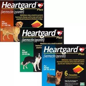 HeartgardPlus for Dogs | Free Shipping $49+ - 1800PetMeds