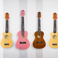 The divine musical instrument尤克里里(微众测)
