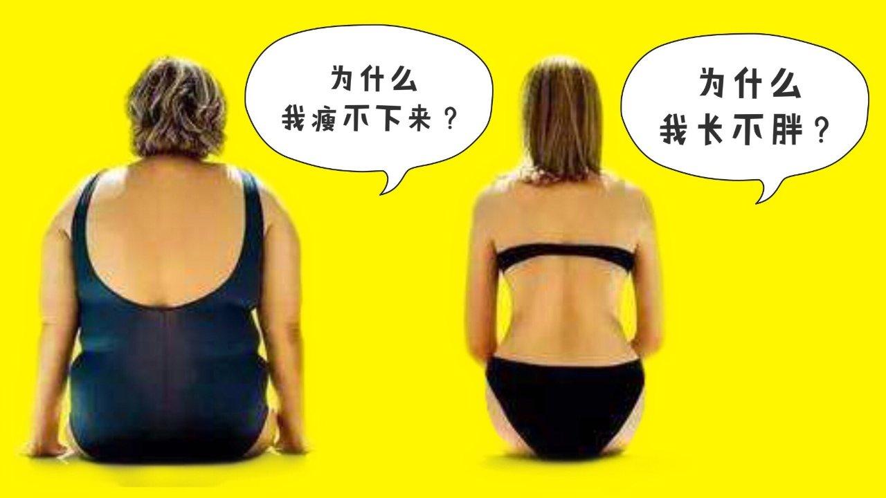 易胖?瘦不下来?长不胖?为你揭开基因的真相!三大症状逐个击破