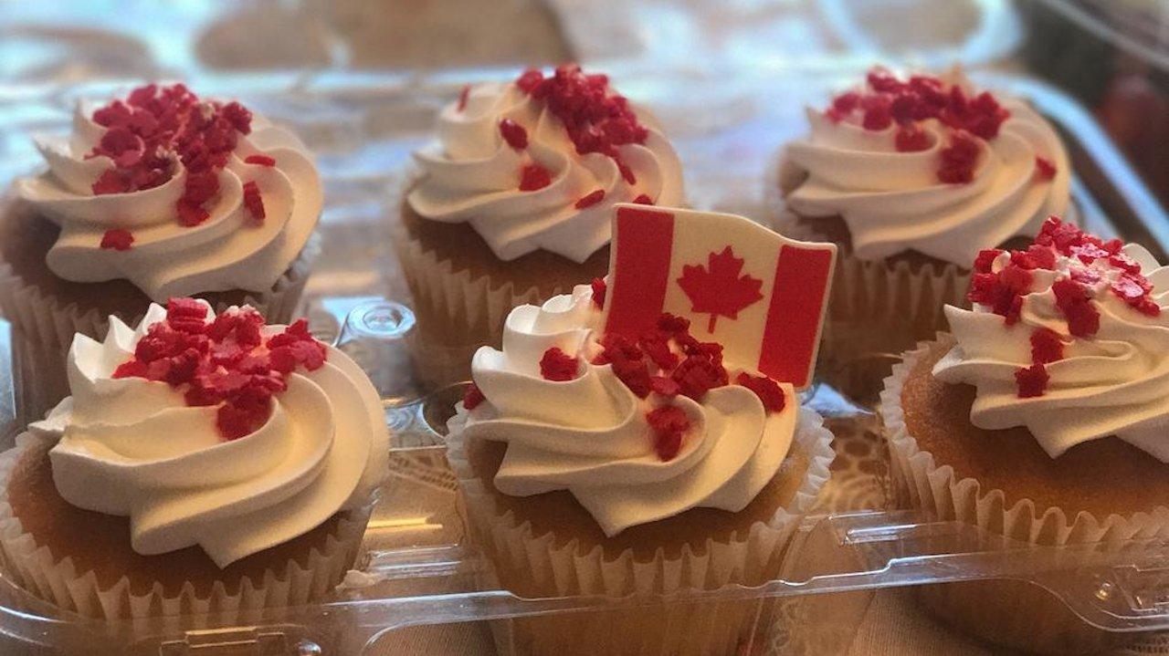 移民加拿大一周年记