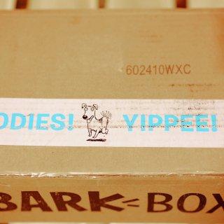 BarkBox小汪汪的订阅礼盒 || 要我的毛娃儿更快乐