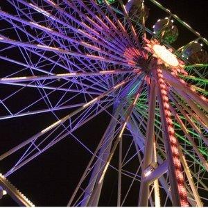 $62/晚起 免费停车 紧挨迪士尼乐园加州阿纳海姆 Red Lion 4星酒店 儿童免费入住