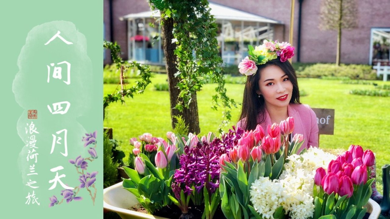 春季赏花指南 | 最美的四月天, 跟老板请个假, 去荷兰看全世界最美的郁金香花海吧🌷