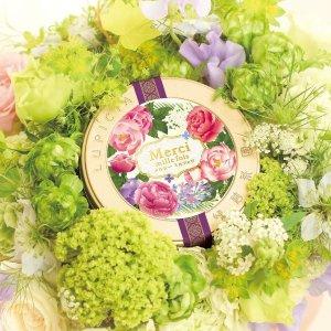 低至8.8折+ 额外8折Lupicia 精选绿碧茶园 白桃乌龙茶叶限时热卖
