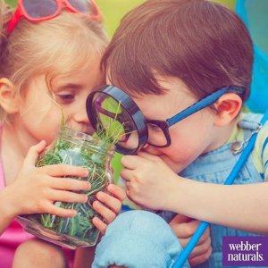 全场75折,$8.06收水果软糖维生素Webber Naturals儿童维生素软糖 解决喂药偏食世界难题