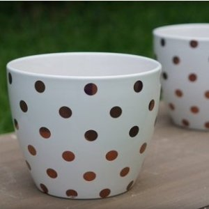 $9.61Better Homes and Gardens Gold 8 in. Dots Outdoor Ceramic Planter - set of 2