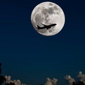 """全美任何單程航班$31搶手慢無:捷藍航空萬圣節""""Monster """"限時特價"""
