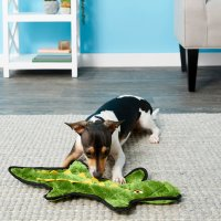 FRISCO 狗狗玩具