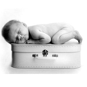 $25 (原价$795)墨尔本 Viva工作室 孕妇或新生儿摄影