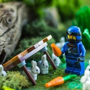 全场8折 £4起收丛林系列、蜘蛛侠系列Lego 精选人气系列折扣热卖 City、Duplo、Friends 全都有