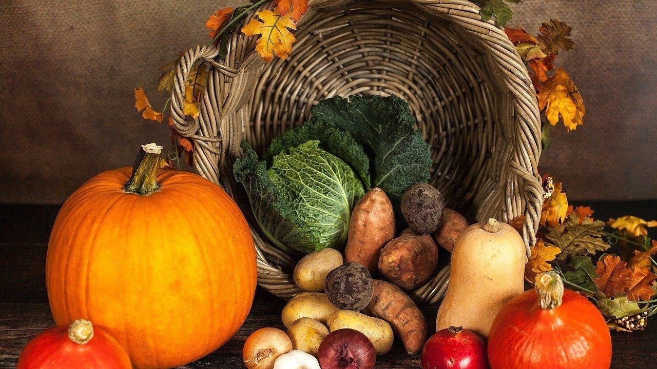常见蔬菜德语单词大全 | 西葫芦、四季豆、大白菜...中德蔬菜名对应、超市买菜不迷茫