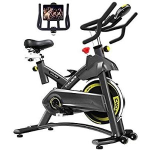 $253.30Cyclace Exercise Bike Stationary 330 Lbs Weight Capacity