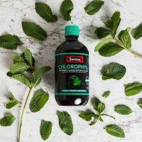 Swisse 叶绿素+薄荷饮品 健康排毒抗氧化 500ml