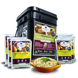 Up to 42% OffWise Company Emergency Food Kits