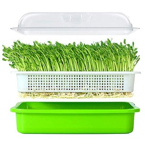 LeJoy Garden Seed Sprouter Tray BPA Free 13.4x9.84x4.72 inches(LxWxH)