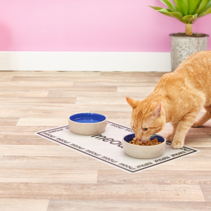 Up to 62% OffPetRageous Designs Pet Paws Placemat @ Chewy
