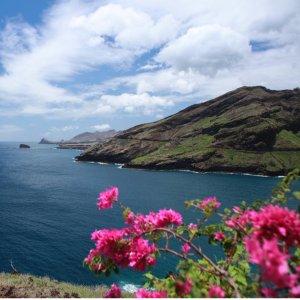 As low as $315 on UnitedDallas to Maui Hawaii Round-trip Airfare Sale