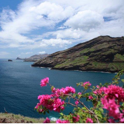 含税低至$315 大量日期达拉斯至夏威夷毛伊岛往返机票超好价