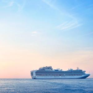 $529起 第3/4人费率低至$997天东加勒比尾单 公主邮轮7月往返 内含港口介绍
