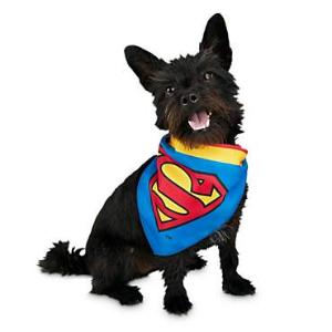 全场7折 + 额外8折Petco 正义联盟系列宠物服饰促销热卖