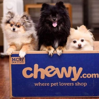 30% off + 5% offAdditional Savings on First Dog Food Autoship Order @ Chewy.com