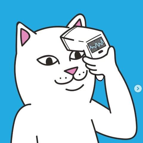 低至3折 T恤£11 猫猫托特包仅£6RIPNDIP 超值低价大促 超火小贱猫 收酷潮卫衣、短袖
