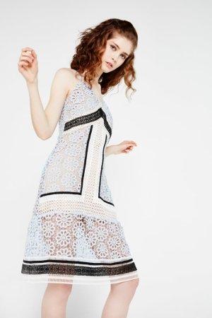 Endless Rose Lace Overlay Midi Dress
