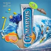 蓝色海洋薄荷牙膏 75ml