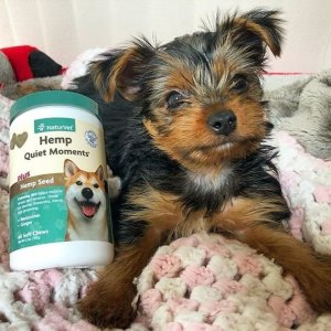 Up to 44% OffNaturVet Pet Products on Sale