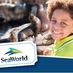 From $169.99 Unlimited Visits + FREE ParkingSea World Orlando Four Parks Ulimited Visits