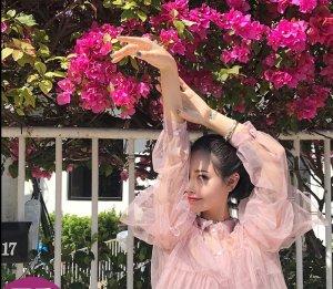 雪纺衫女2018新款网纱上衣超仙甜美洋气小衫时尚防晒衣